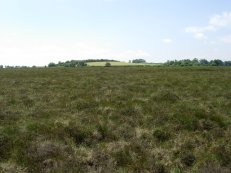 Fallahogy Bog, northern Ireland