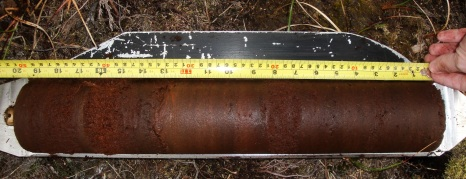 A core section retrieved from many metres under the bog surface.