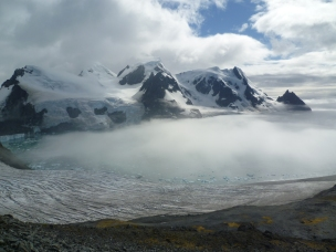 Possibly the most scenic moss in the world? View from high elevation moss bank on Elephant Island, South Shetland Islands, Anatarctic Peninsula. Photo Credit: Dan Charman