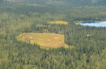 An Alaskan peatland from the air!