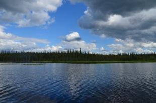 Smith Lake. A thermokarst lake near Fairbanks, AK.