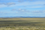 The semi-arid grasslands of northern Tierra del Fuego