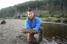 Gorgeous brown trout!