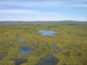 A spectacular aerial view across the bogs in Quebec.