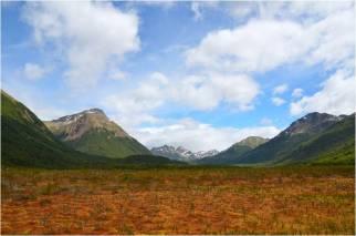 A raised peat bog in Argentine Tierra del Fuego