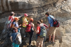 Delegates of the conference examine layer upon layer of tephra deposits deposited by previous Mt St Helens eruptions.