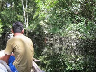 Heading upstream towards Aucayacu peatland