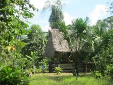Our jungle home for two weeks