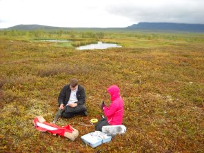 Graeme taking field samples in Abisko.